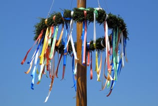 Maibaum medium